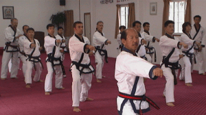 Moo Duk Kwan Technical Training